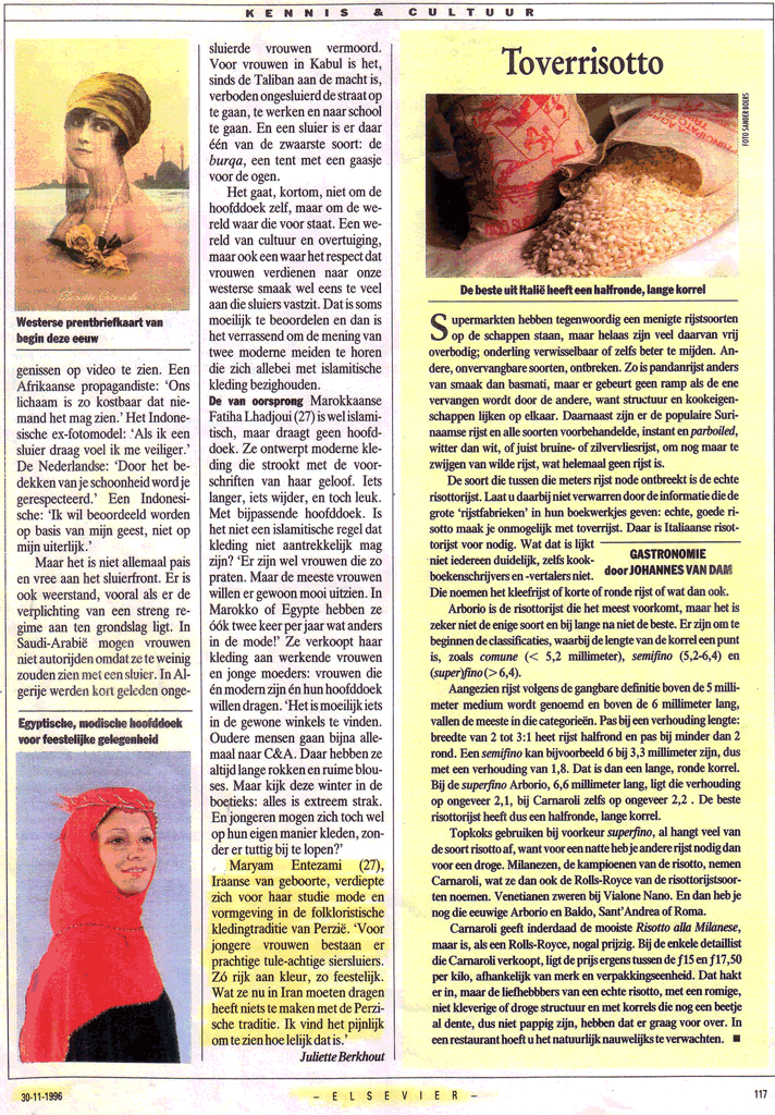 Elsevier, Netherlands: 1996, News & Press - Historic Persian Fashion Design & Research